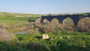הגשר הישן בארם נהריים. אזור מצוין לליקוט צמחי בר למאכל (צילום: גיל גוטקין)