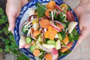 סלט ירקות הכי טעים בעולם, באחריות!