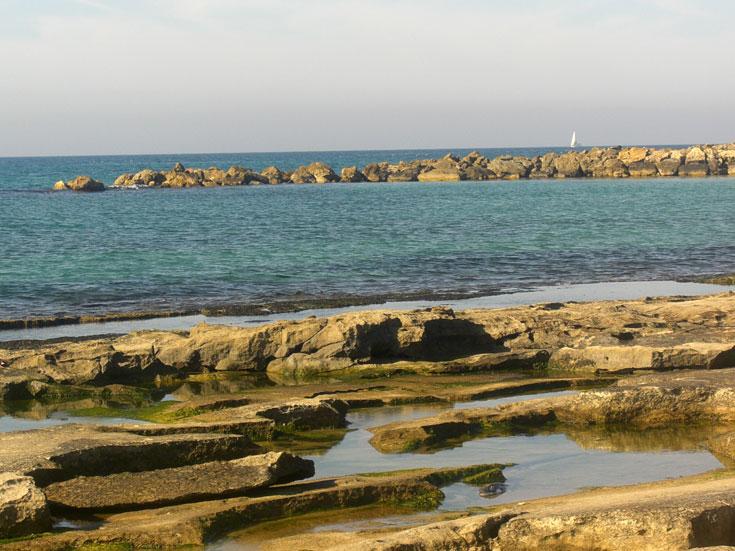 שבי ציון - החוף ובריכות הסלע. צילום: אריאלה אפללו