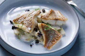 בית ספר לבישול: איך מכינים ציר דגים?