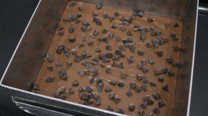 מעבירים לתבניתומפזריםמעלשבבי שוקולד צ'יפס. צילום: שירן מתיתיהו