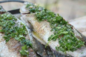 מורחים את המרינדהבנדיבותעלהדגיםובתוךהדגים ומכניסים לתנור לכ-20-30 דקות. צילום: פלג בכור