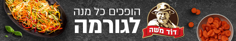באנר דוד משה