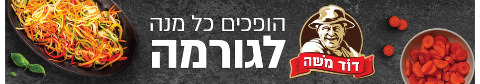 באנר דסקטופ דוד משה